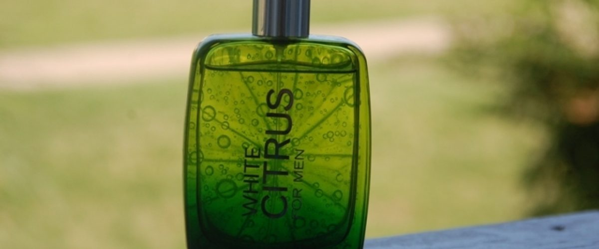 Bath-and-Body-Works-White-Citrus-Cologne-for-Men