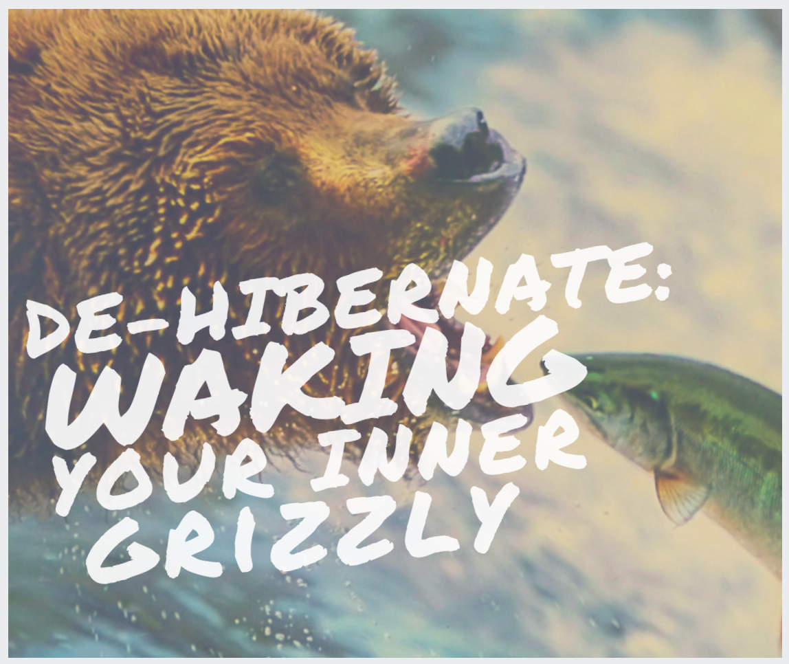 De-hibernate: Waking your inner grizzly: Find your roar