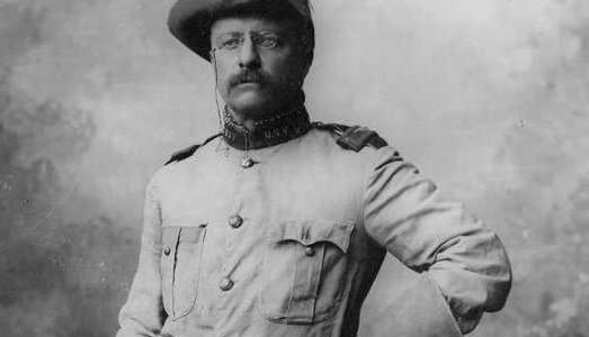 12-teddy-roosevelt-quotes-on-courage-leadership-and-success
