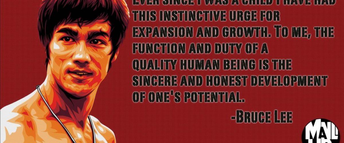 Bruce Lee 3