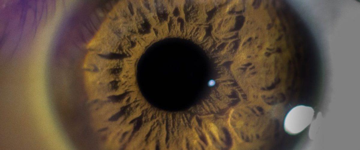 eyeball-2473099_1920