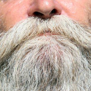 beard-1239335_1920