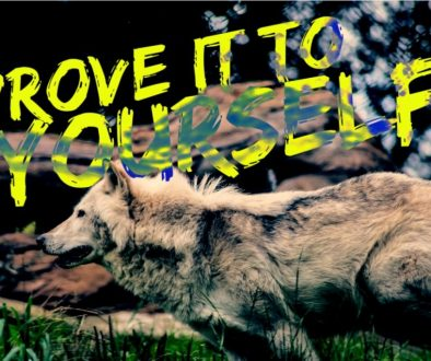 wolf - prove yourself - blog for men