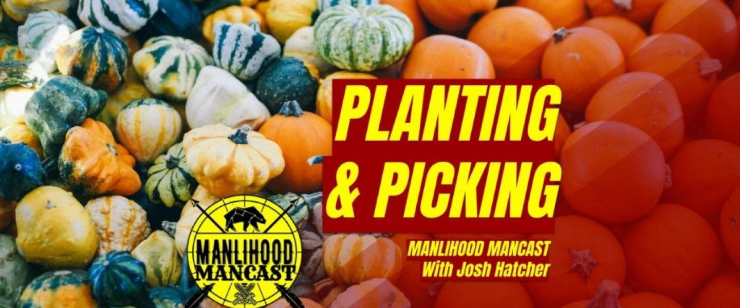 law of the harvest - podcast for men