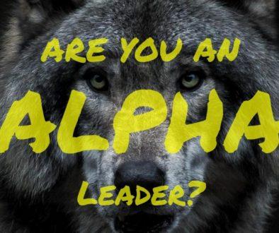 secrets of alpha leadership