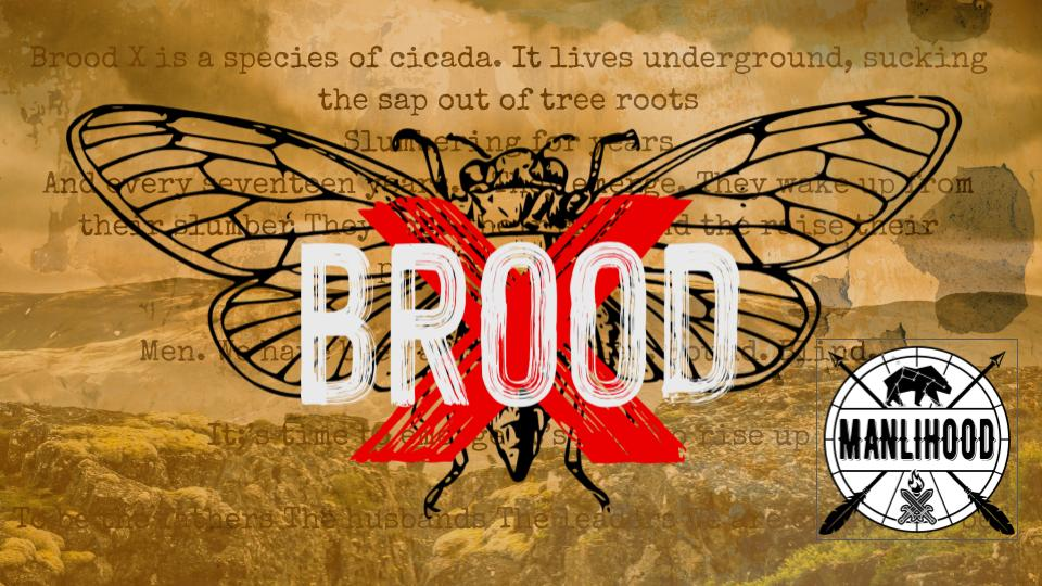 brood x - time for men to rise up